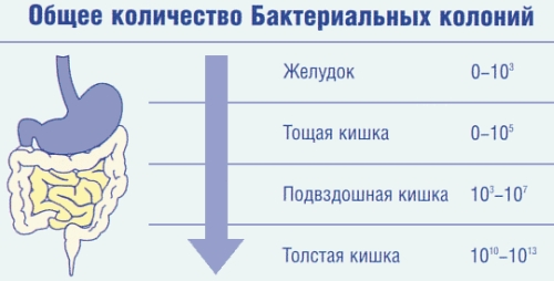 diagnostika-opusheniya-stenok-vlagalisha